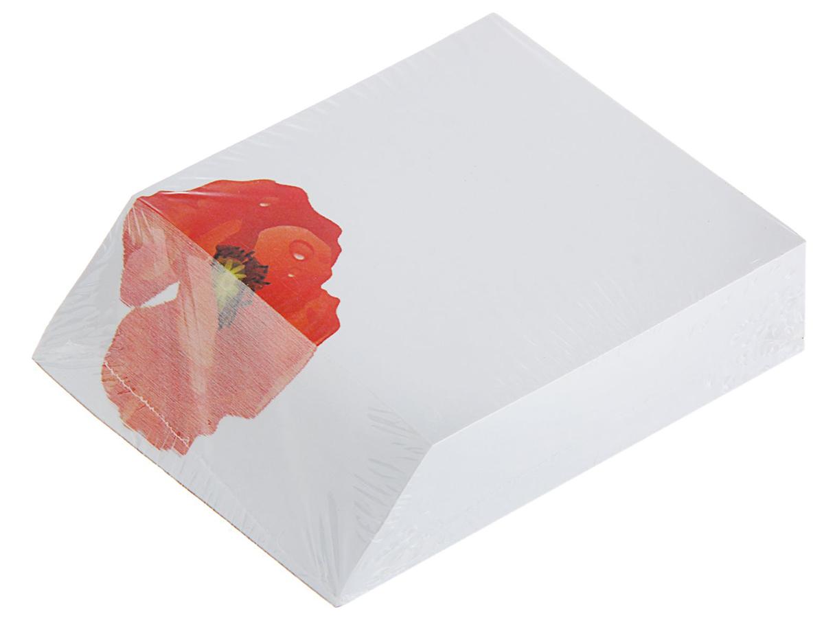 Фолиант Блок для записей Маки 9 x 10 см 300 листов1794297Невозможно представить нашу жизнь без праздников! Мы всегда ждем их и предвкушаем, обдумываем, как проведем памятный день, тщательно выбираем подарки и аксессуары, ведь именно они создают и поддерживают торжественный настрой. Блок бумаги для записей 9х11см, 300 листов Маки, офсет 70г/м2 — это отличный выбор, который привнесет атмосферу праздника в ваш дом!Часто появляется необходимость оставить небольшое послание коллеге, сделать пометку для родных или запомнить нужный телефон?Чтобы зафиксировать важную информацию, достаточно иметь при себе неброский, но необходимый в быту предмет — Блок бумаги для записей 9х11см, 300 листов Маки, офсет 70г/м2. Этот канцелярский аксессуар займет минимум места в сумке или на рабочем столе.