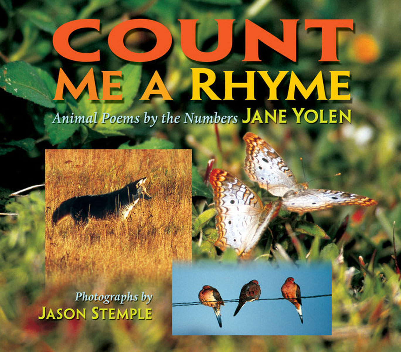 Count Me a Rhyme: Animal Poems by the Numbers animal poems