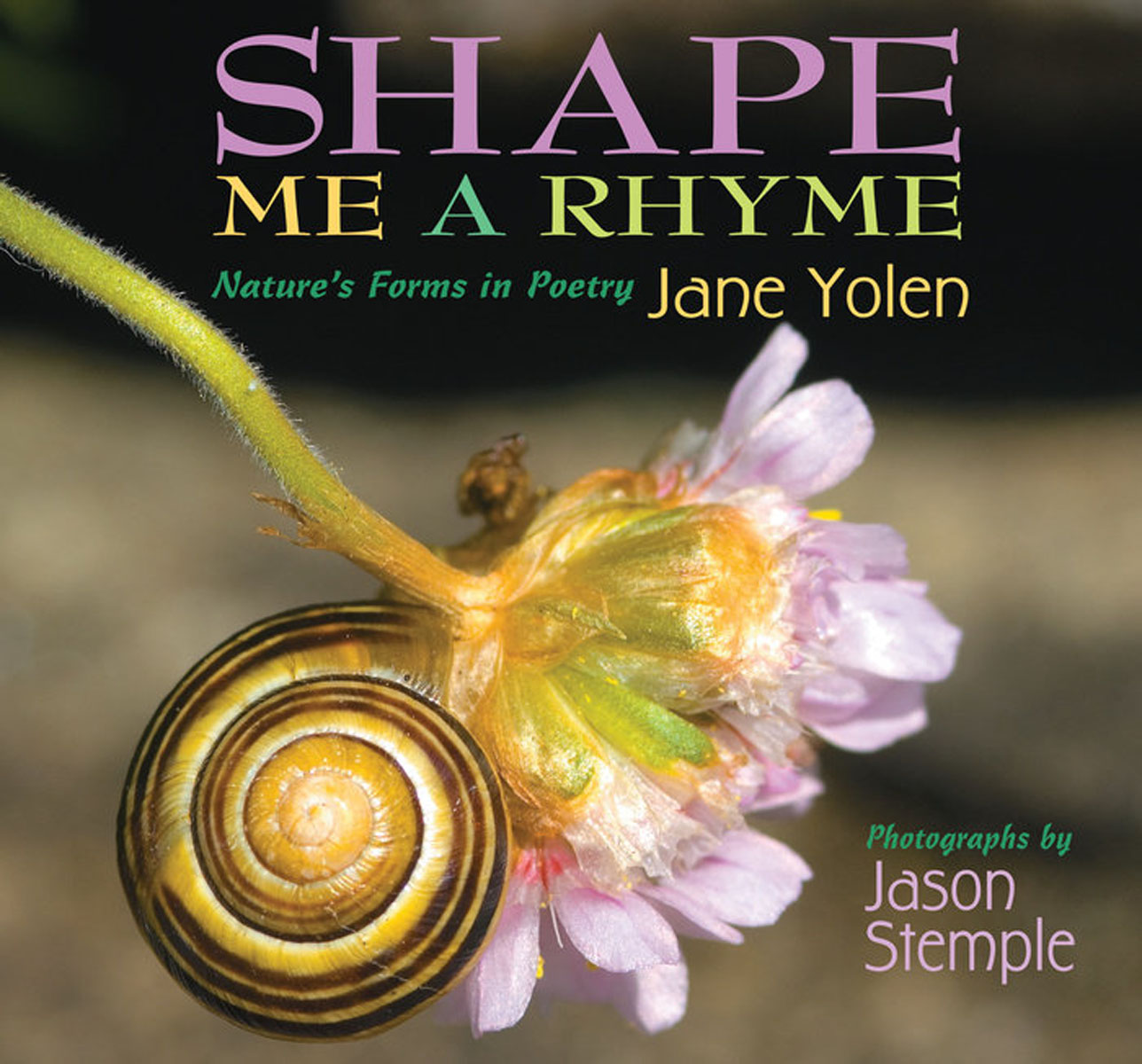 Shape Me a Rhyme: Nature's Forms in Poetry found in brooklyn