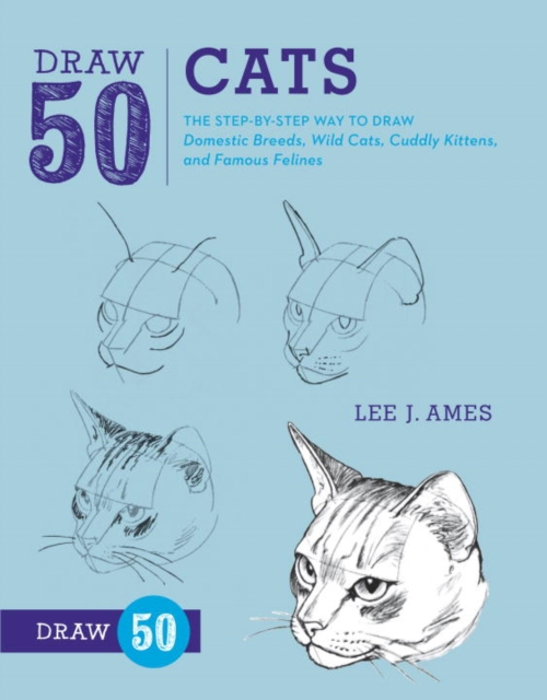 Draw 50 Cats how to draw fairies and mermaids