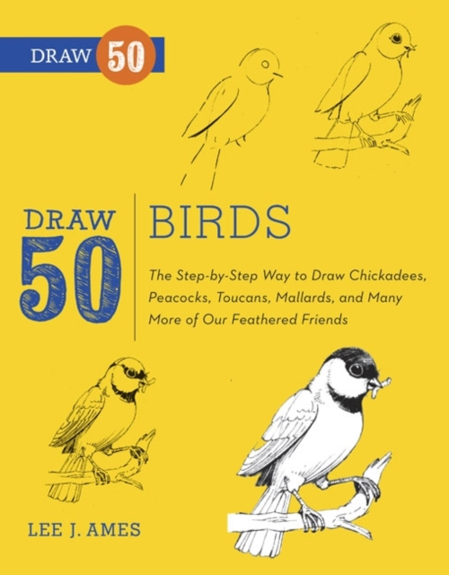 Draw 50 Birds woodwork a step by step photographic guide to successful woodworking