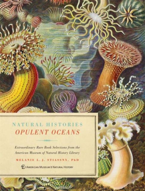 Opulent Oceans н и руденко рецензия на книгу biagioli m from print to patents living on instruments in early modern europe 1500–1800 history of science 44 2006 p 139–186