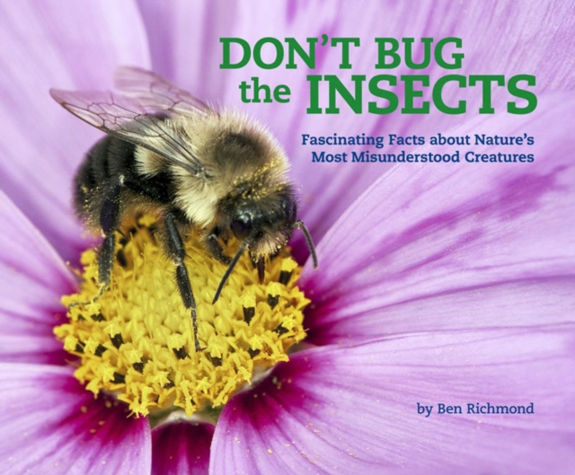 Dont Bug the Insects why should i bother about the planet