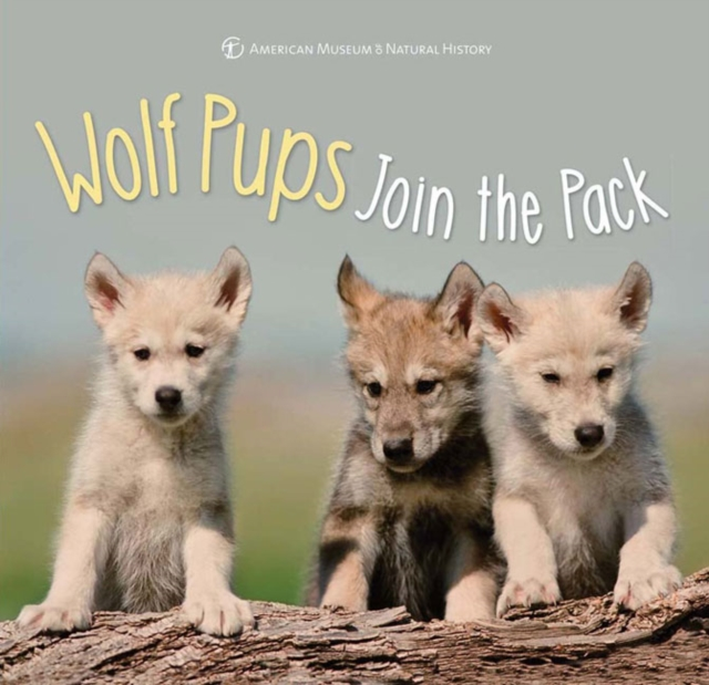 Wolf Pups Join the Pack samuel richardson clarissa or the history of a young lady vol 8