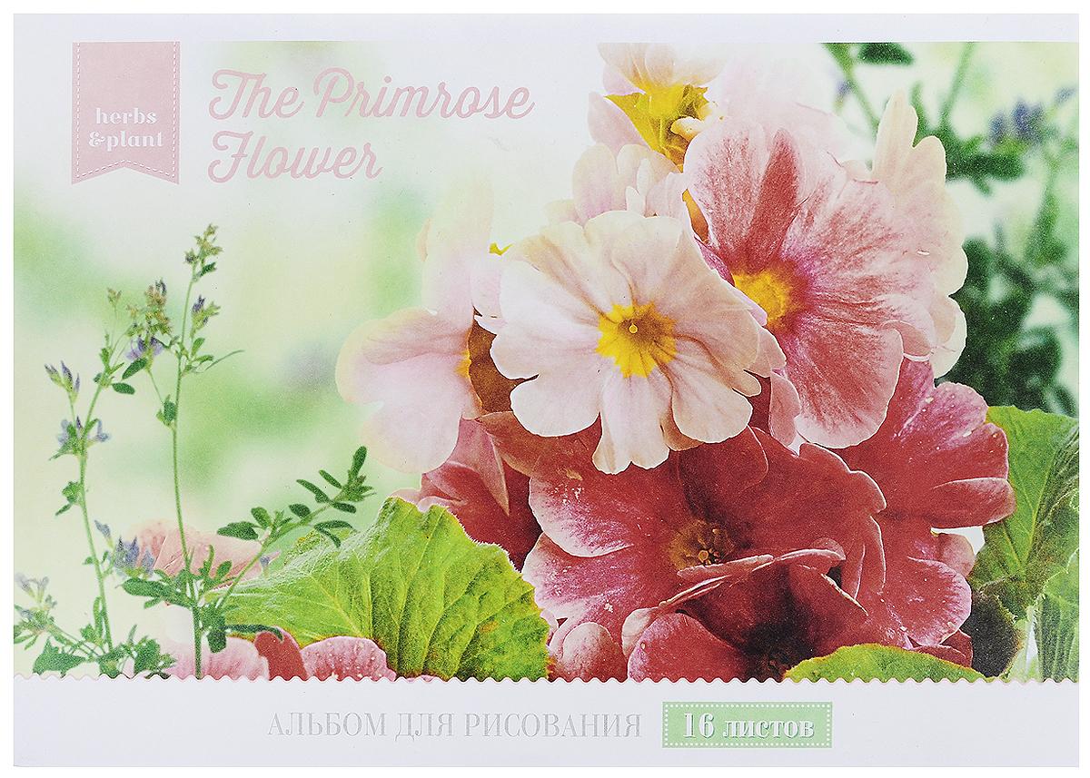 ArtSpace Альбом для рисования Magic Flower Розовые цветы 16 листовА16ф_9139_розовый цветыАльбом для рисования ArtSpace Magic Flower будет вдохновлять вашего ребенка на творческий процесс.Альбом изготовлен из белоснежной бумаги с яркой обложкой, оформленной изображением прекрасных цветов. Внутренний блок альбома состоит из 16 листов, соединенных скрепками. Высокое качество бумаги позволяет рисовать в альбоме различными типами красок, фломастерами, цветными и чернографитными карандашами, гелевыми ручками. Занимаясь изобразительным творчеством, ребенок тренирует мелкую моторику рук, становится более усидчивым и спокойным.