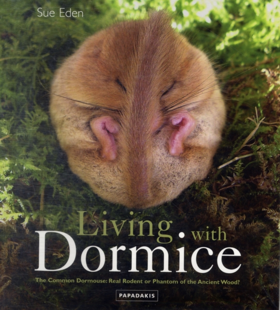 Living With Dormice the new children s cubs hat qiu dong with cartoon animals knitting wool cap and pile