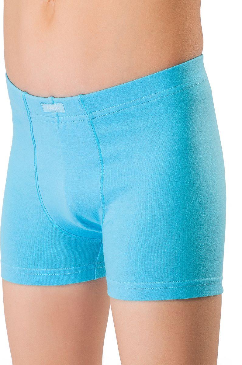 Трусы-боксеры для мальчика Lowry, цвет: голубой. BSHL-338. Размер XL (134/140) трусы lowry трусы 3 шт