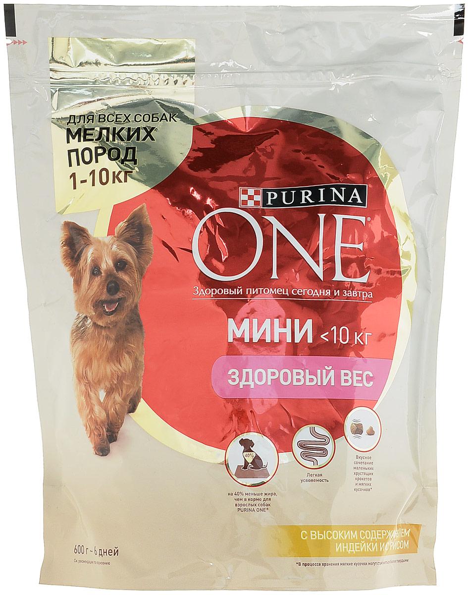 Сухой корм Purina One Мини Здоровый вес для собак мелких пород, индейка с рисом, 600 г57920Сухой корм Purina One Мини Здоровый вес - это вкусное сочетание хрустящих крокетов и мягких кусочков с высоким содержанием индейки, содержит на 40% меньше жира, чем в корме для взрослых собак Purina One для снижения потребляемых калорий и поддержания оптимального веса. Товар сертифицирован.Уважаемые клиенты! Обращаем ваше внимание на то, что упаковка может иметь несколько видов дизайна. Поставка осуществляется в зависимости от наличия на складе.