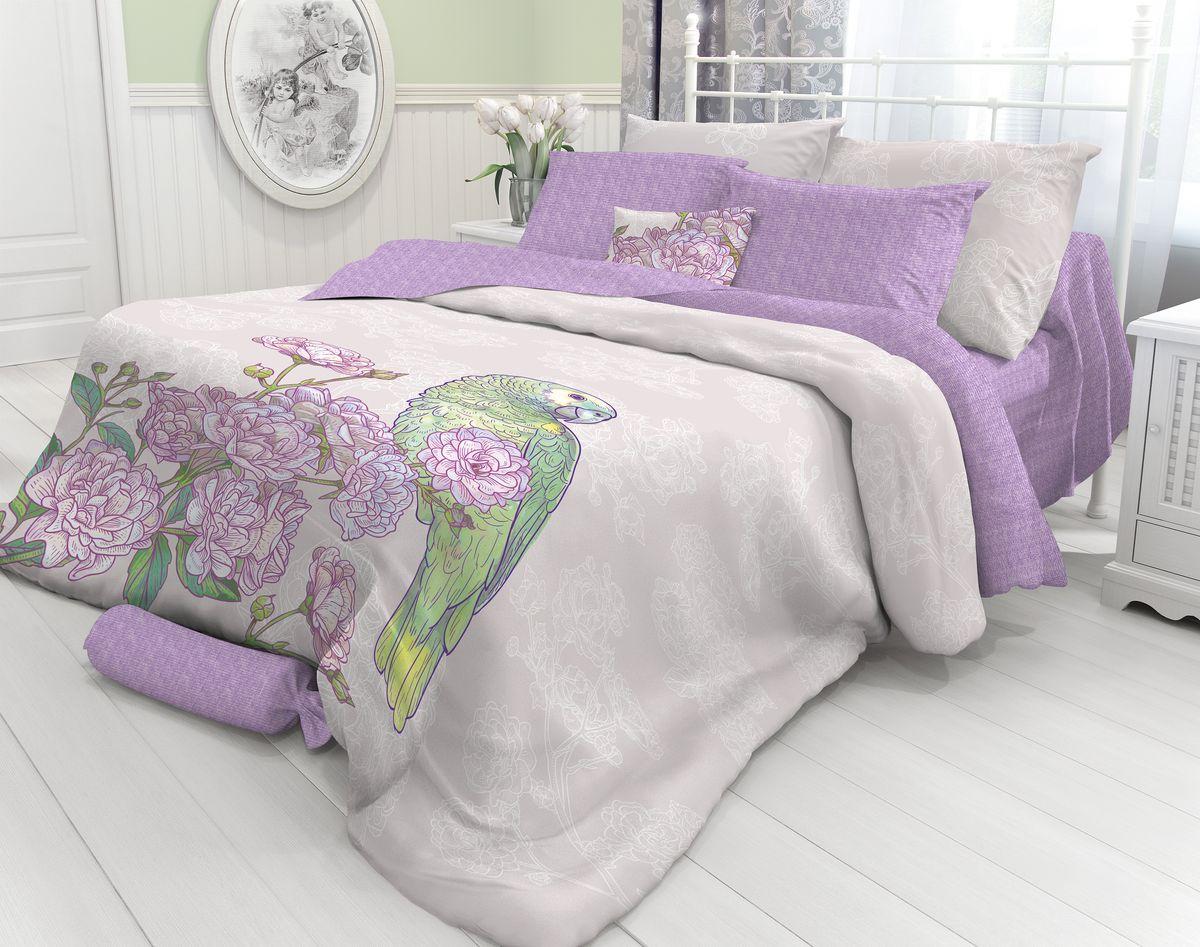 Комплект белья Verossa Swain, 2-спальный, наволочки 70х70. 718705 комплект белья mirarossi sofia 2 спальный наволочки 70х70 цвет кремовый зеленый сиреневый