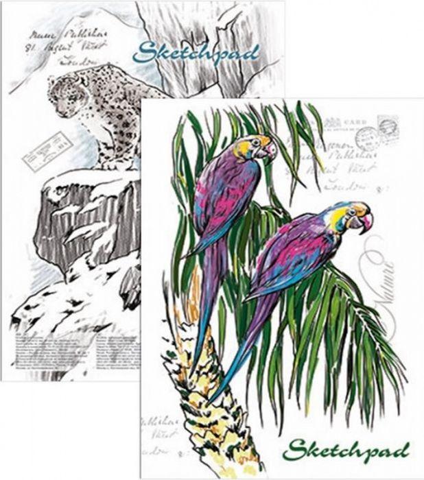 Феникс+ Альбом для эскизов Дикая природа 60 листов альбом для эскизов скетчпад феникс 60л а5 животные пастель обложка 7бц под матовой пленкой на спирали 45024