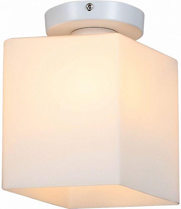Светильник накладной ST-Luce Aspetto, E27, 60W. SL548.501.01SL548.501.01Светильник накладной ST-Luce Aspetto, E27, 60W. SL548.501.01