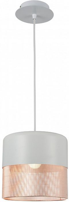 Светильник подвесной ST-Luce, E27, 60W. SL976.443.01SL976.443.01Светильник подвесной ST-Luce, E27, 60W. SL976.443.01