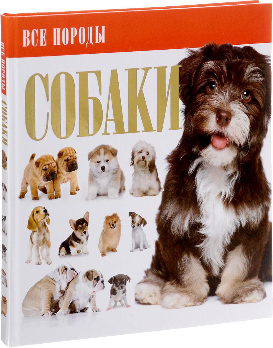 Собаки электростатический сепаратор отделение угля от породы производство россия