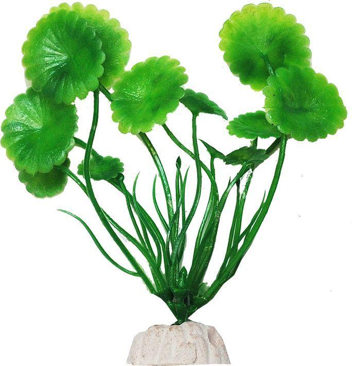 Растение для аквариума Уют Щитолистник зеленый, высота 10 см растение еда для рыб 5 букв