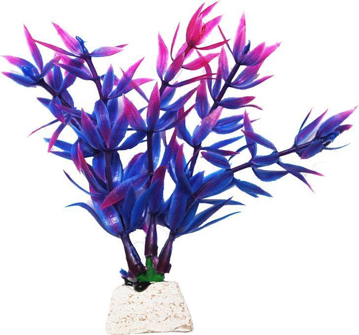 Растение для аквариума Уют Гетерантера фиолетовая, высота 10 см уют