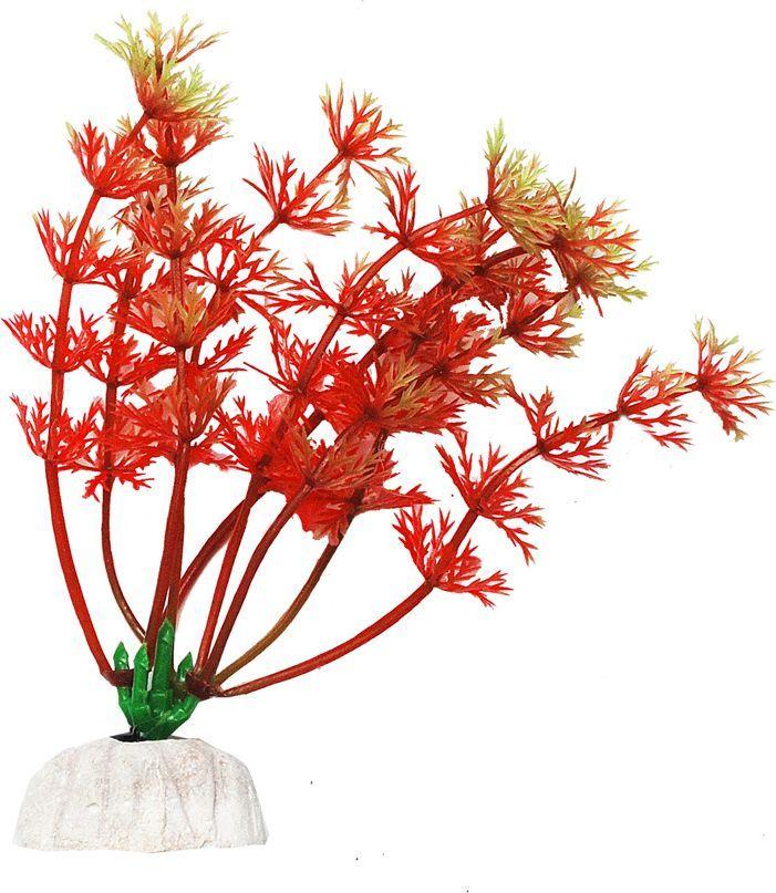 Растение для аквариума Уют Амбулия красная, высота 10 см уют