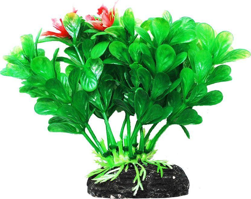 Растение для аквариума Уют Людвигия зеленая, высота 11 смВК202Пластиковое растение для аквариума Уют Людвигия зеленая - отличный аксессуар, который украсит ваш домашний аквариум. Изготовлено из искусственных и полимерных материалов. Безопасно для рыб и других аквариумных обитателей.