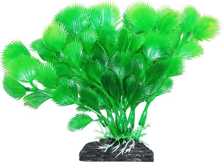 Растение для аквариума Уют Дианея зеленая, высота 11 смВК205Пластиковое растение для аквариума УЮТ - отличный аксессуар, который украсит ваш домашний аквариум. Изготовлено из искусственных и полимерных материалов. Безопасно для рыб и других аквариумных обитателей.