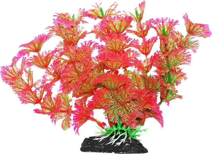 Растение для аквариума Уют Амбулия розово-зеленая, высота 11 смВК216Пластиковое растение для аквариума УЮТ - отличный аксессуар, который украсит ваш домашний аквариум. Изготовлено из искусственных и полимерных материалов. Безопасно для рыб и других аквариумных обитателей.