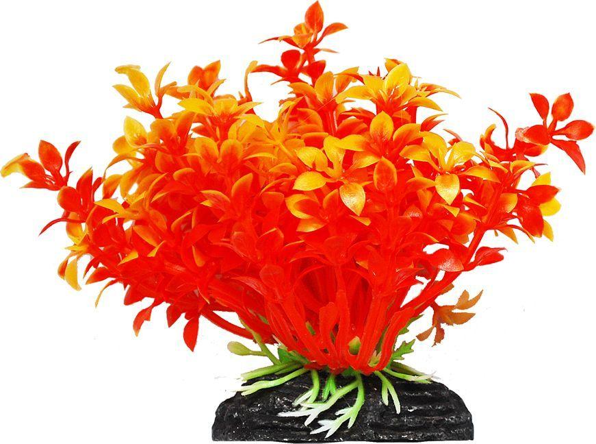 Растение для аквариума Уют Гемиантус оранжевый, высота 11 см растение еда для рыб 5 букв