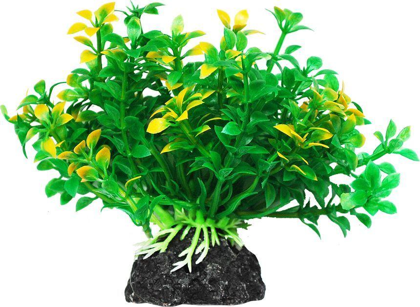 Растение для аквариума Уют Микрантемум зелено-желтый, высота 11 см уют
