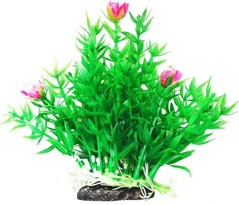 Растение для аквариума Уют Гемиантус с розовыми цветами, высота 12 смВК303Пластиковое растение для аквариума УЮТ - отличный аксессуар, который украсит ваш домашний аквариум. Изготовлено из искусственных и полимерных материалов. Безопасно для рыб и других аквариумных обитателей.