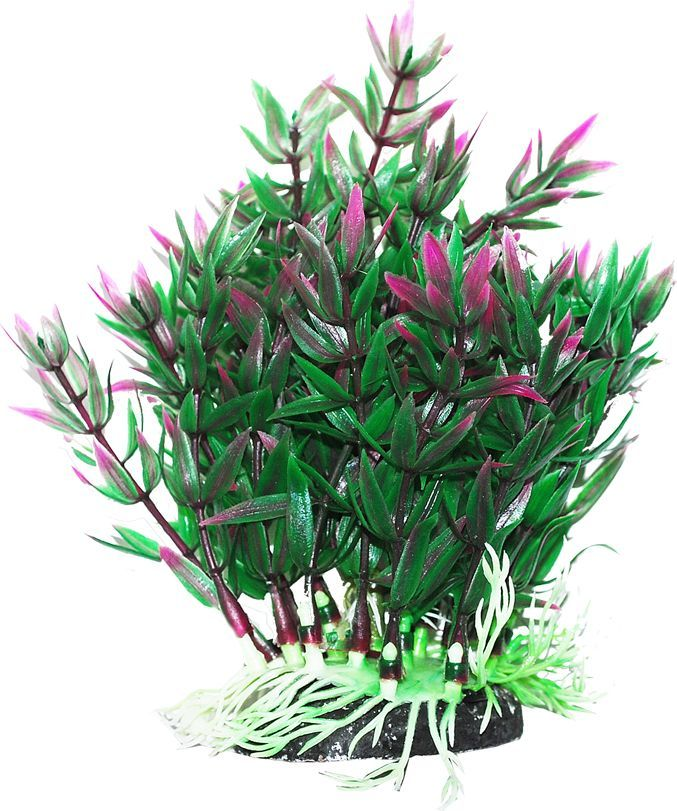 Растение для аквариума Уют Гетерантера зелено-фиолетовая, высота 12 см. 1203138 растение еда для рыб 5 букв