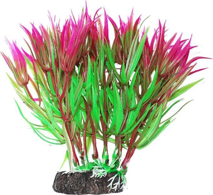 Растение для аквариума Уют Гетерантера зелено-фиолетовая, высота 12 смВК318Пластиковое растение для аквариума Уют Гетерантера зелено-фиолетовая - отличный аксессуар, который украсит ваш домашний аквариум. Изготовлено из искусственных и полимерных материалов. Безопасно для рыб и других аквариумных обитателей.