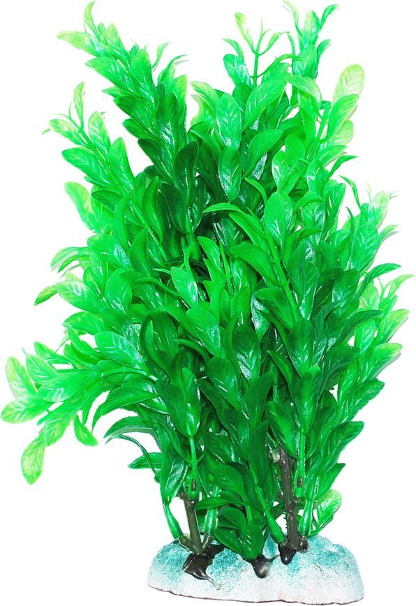 Растение для аквариума Уют Людвигия зеленая, овальные листья, высота 20 см уют