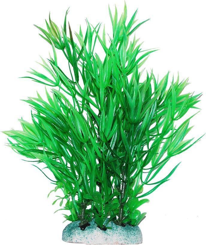 Растение для аквариума Уют Гемиантус зеленый, высота 20 смВК408Пластиковое растение для аквариума Уют Гемиантус зеленый - отличный аксессуар, который украсит ваш домашний аквариум. Изготовлено из искусственных и полимерных материалов. Безопасно для рыб и других аквариумных обитателей.
