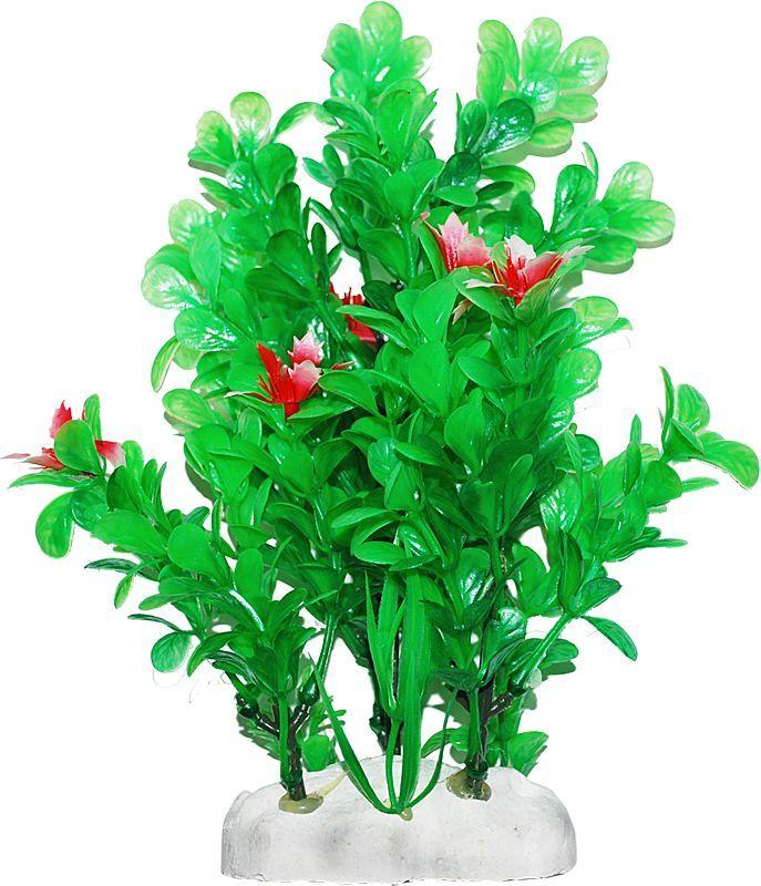Растение для аквариума Уют Бакопа с красными цветами, высота 20-22 смВК413Пластиковое растение для аквариума Уют Бакопа с красными цветами - отличный аксессуар, который украсит ваш домашний аквариум. Изготовлено из искусственных и полимерных материалов. Безопасно для рыб и других аквариумных обитателей.