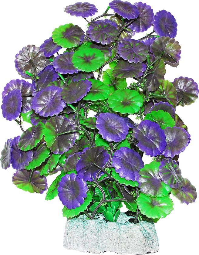 Растение для аквариума Уют Щитолистник зелено-фиолетовый, высота 24 смВК506Пластиковое растение для аквариума Уют Щитолистник зелено-фиолетовый - отличный аксессуар, который украсит ваш домашний аквариум. Изготовлено из искусственных и полимерных материалов. Безопасно для рыб и других аквариумных обитателей.