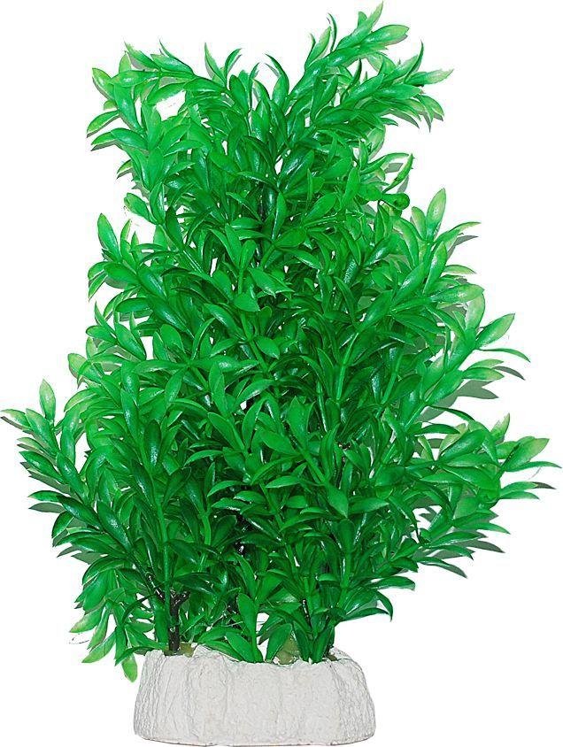 Растение для аквариума Уют Гигрофила, высота 24-32 см уют
