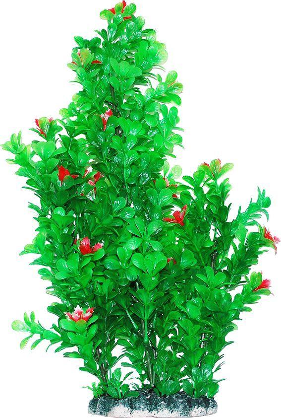 Растение для аквариума Уют  Бакопа с красными цветами , высота 44 см - Аксессуары для аквариумов