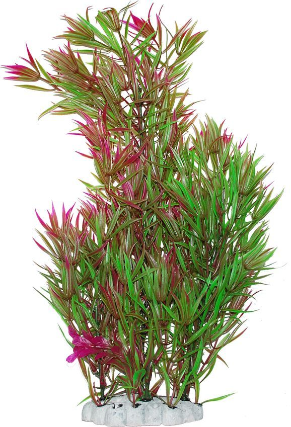 Растение для аквариума Уют Гетерантера зелено-фиолетовая, высота 44 смВК604Пластиковое растение для аквариума Уют Гетерантера зелено-фиолетовая - отличный аксессуар, который украсит ваш домашний аквариум. Изготовлено из искусственных и полимерных материалов. Безопасно для рыб и других аквариумных обитателей.