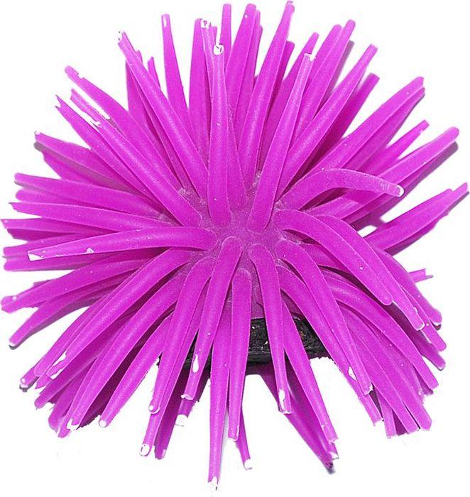 Коралл для аквариума Уют Разноцветные щупальца, силиконовый, 8 х 8 х 7 смВК721Декоративный коралл УЮТ отличный аксессуар, который украсит ваш домашний аквариум.Коралл не наносит вред обитателям аквариума. Изготовлено из искусственных и полимерных материалов