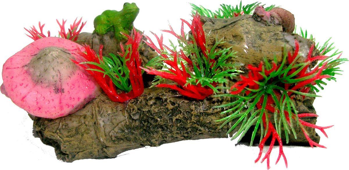 Растение для аквариума №1 Водоросли и лягушка на коряге, высота 7 смЕР014Растение для аквариума, выполненное из высококачественного нетоксичного пластика, станет прекрасным украшением вашего аквариума. Пластиковое растение идеально подходит для дизайна всех видов аквариумов. В воде происходит абсолютная имитация живых растений. Изделие не требует дополнительного ухода. Оно абсолютно безопасно, нейтрально к водному балансу, устойчиво к истиранию краски, подходит как для пресноводного, так и для морского аквариума. Растение поможет вам смоделировать потрясающий пейзаж на дне вашего аквариума.