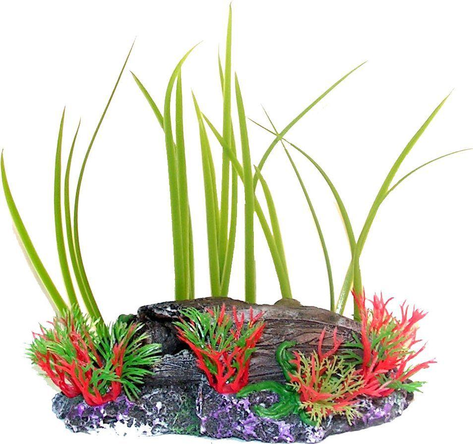 Растение для аквариума №1 Осот и водоросли на коряге, высота 15 смЕР022Пластиковое растение для аквариума №1 - отличный аксессуар, который украсит ваш домашний аквариум. Изготовлено из искусственных и полимерных материалов. Безопасно для рыб и других аквариумных обитателей.
