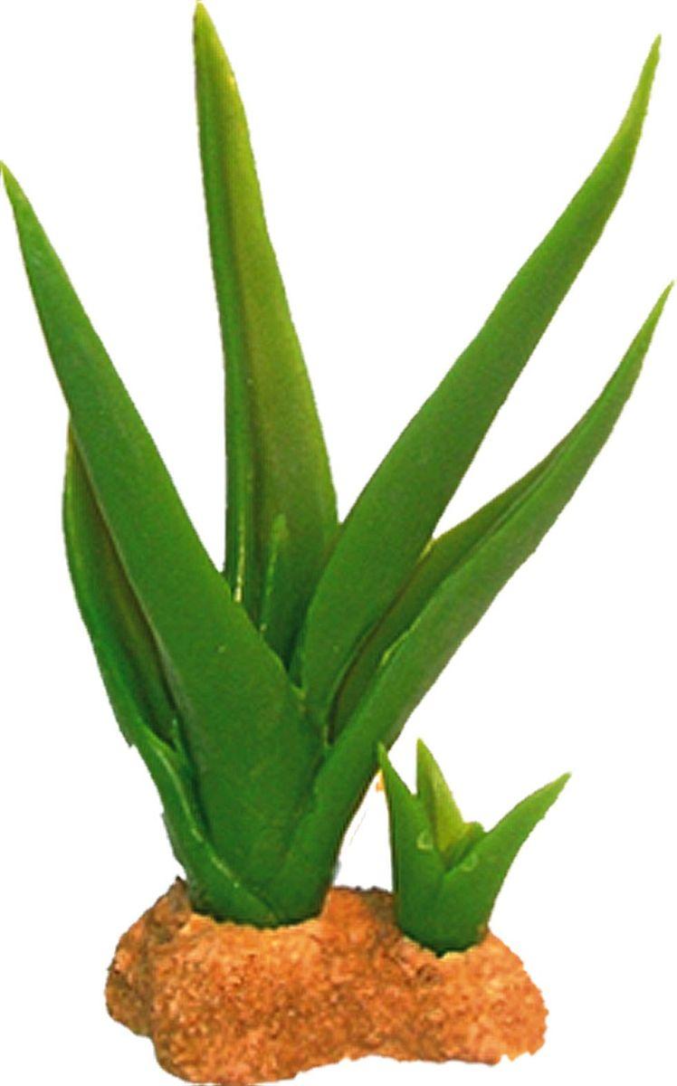 Растение для аквариума №1 Кактусы большой и маленький, высота 16,5 см