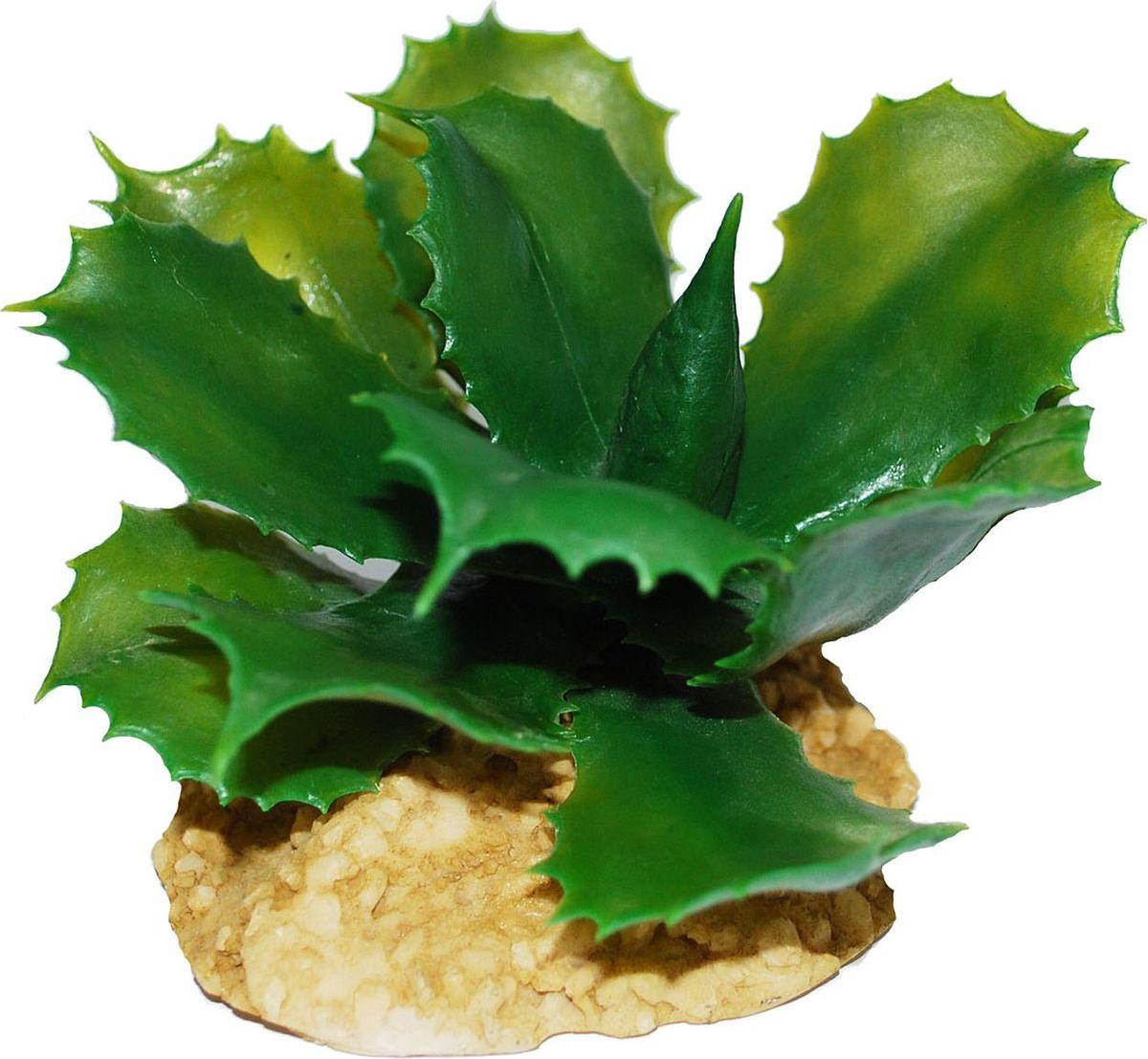 Растение для аквариума №1 Кактус игольчатый, высота 6 смЕР045Пластиковое растение для аквариума №1 - отличный аксессуар, который украсит ваш домашний аквариум. Изготовлено из искусственных и полимерных материалов. Безопасно для рыб и других аквариумных обитателей.