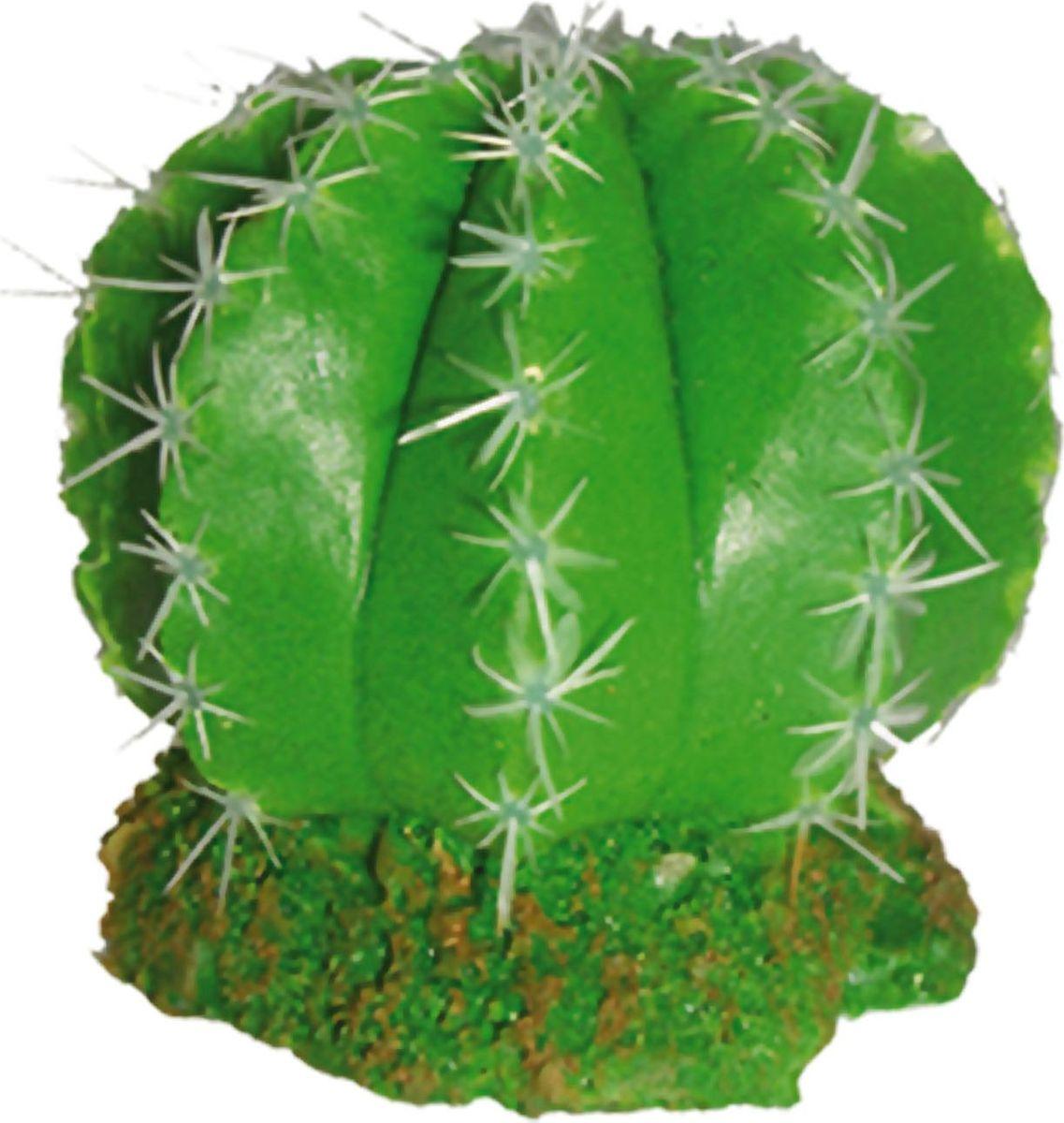 Растение для аквариума №1 Кактус дольками, высота 9,5 см