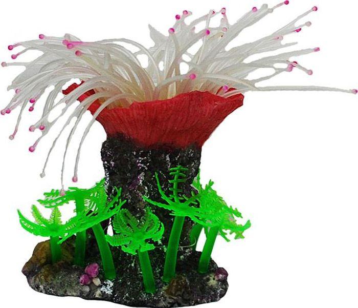 Коралл для аквариума №1 Белая хризантема, 12,5 х 9 х 10,5 смЕК147DДекоративный коралл №1 отличный аксессуар, который украсит ваш домашний аквариум.Коралл не наносит вред обитателям аквариума. Изготовлено из искусственных и полимерных материалов
