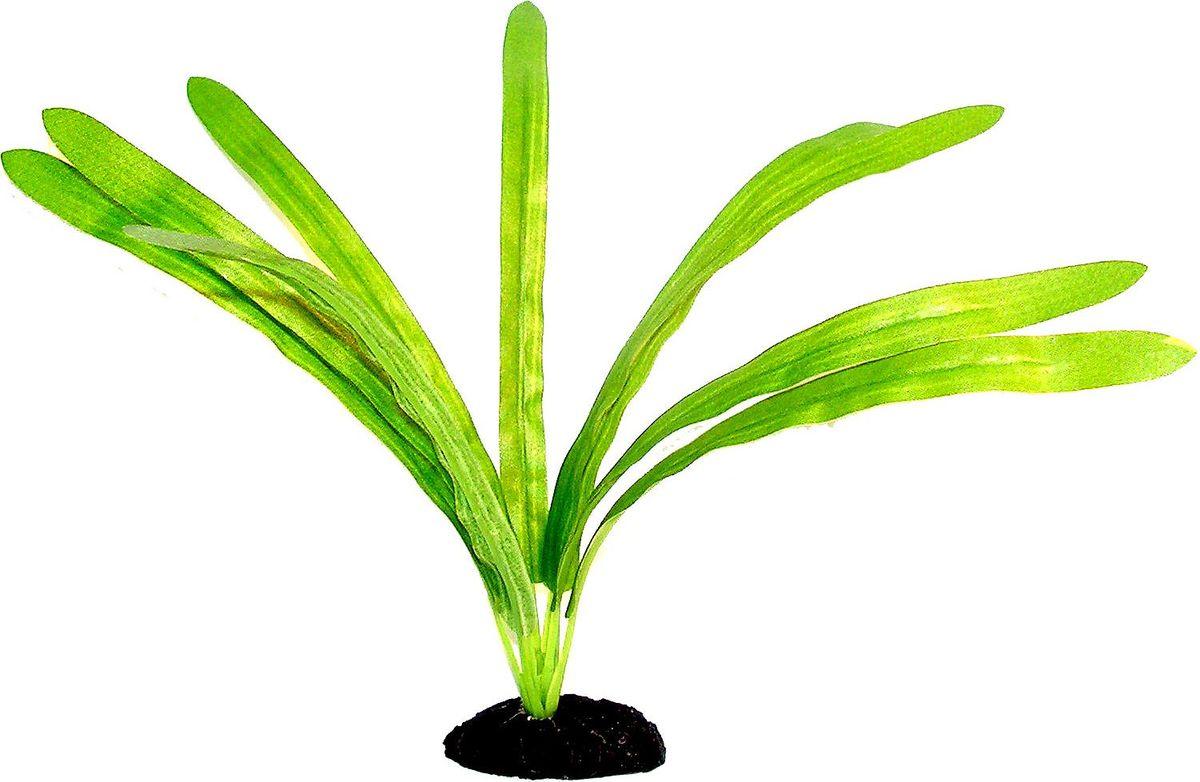 Растение для аквариума №1 Драцена, высота 12 смЕР023/1Пластиковое растение для аквариума №1 - отличный аксессуар, который украсит ваш домашний аквариум. Изготовлено из искусственных и полимерных материалов. Безопасно для рыб и других аквариумных обитателей.