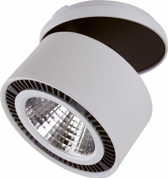 Светильник на штанге Lightstar Forte Inca, 26W. LS_214820LS_214820Светильник на штанге Lightstar Forte Inca, 26W. LS_214820