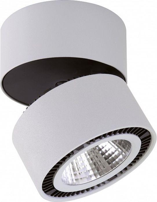 Светильник на штанге Lightstar Forte Muro, 26W. LS_214830LS_214830Светильник на штанге Lightstar Forte Muro, 26W. LS_214830