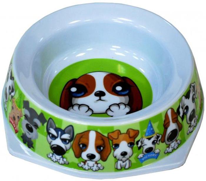 Миска для животных №1 Щенок, 300 млА1003-2/1Антибактериальные свойства. Не впитывает жир и запах. Нетоксична. Рассчитаны на длительное активное использование. Имеет вид и прочность пластиковой посуды.