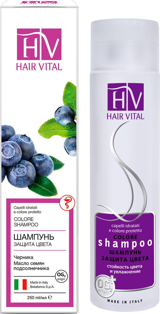 Hair Vital Шампунь Защита Цвета, 250 мл70630• Сохраняет цвет на длительный срок • Восстанавливает структуру волос • Придает волосам ослепительный блеск • Интенсивно увлажняет и питает • Подходит для ежедневного использования Активные компоненты: экстракт черники, подсолнечник, диметикон, OG2