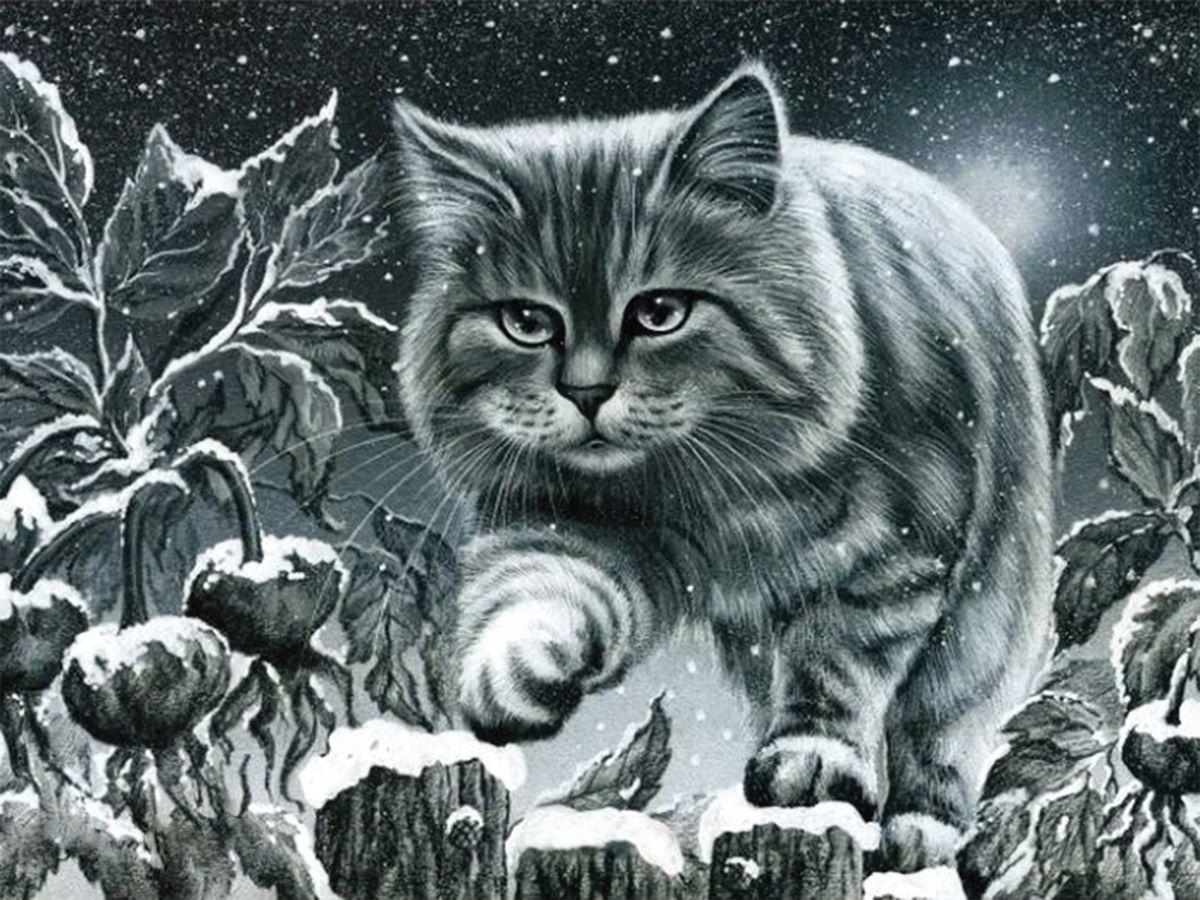 """Набор для изготовления картины со стразами Алмазная Живопись """"Кот на заборе"""", 40 х 30 см"""