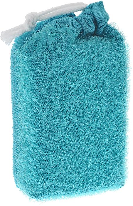 Губка для тела Riffi, цвет: бирюзовый кисточка riffi перфект для сухой пудры малая 3971