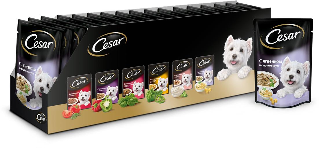 Корм консервированный Cesar, для взрослых собак всех пород, с ягненком в сырном соусе, 100 г, 24 шт42060Полнорационный сбалансированный корм для взрослых собак Cesar идеально подойдет вашему любимцу. Аппетитные мясные кусочки в нежном сырном соусе содержат все питательные вещества, витамины и минералы, необходимые для сбалансированного питания вашей собаки каждый день. Это изысканное блюдо - яркий пример того, как простые ингредиенты в руках истинного кулинара превращаются в удивительно вкусное блюдо. Сочные, тающие во рту кусочки ягненка рождают нежный вкус, который подарит настоящее удовольствие вашей собаке. Товар сертифицирован.